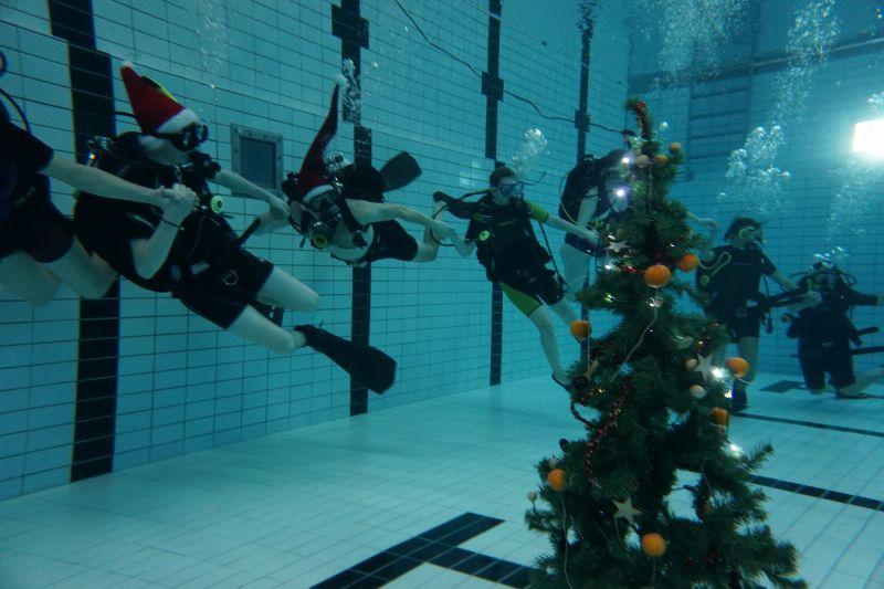 Orca ønsker dig en rigtig god jul og godt nytår